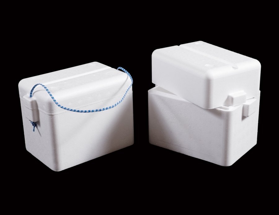 6 Pack Cooler Box Re 2605479800